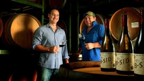 The value vineyard becoming a premium producer | Viticulture | Scoop.it