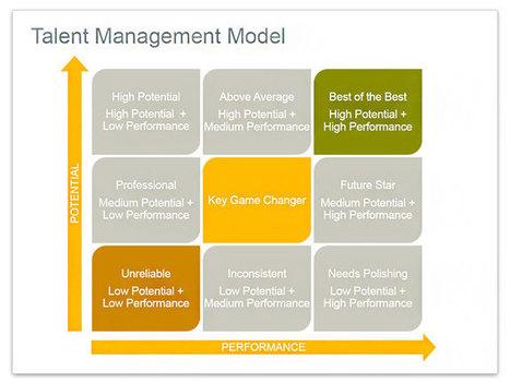 talent management essay
