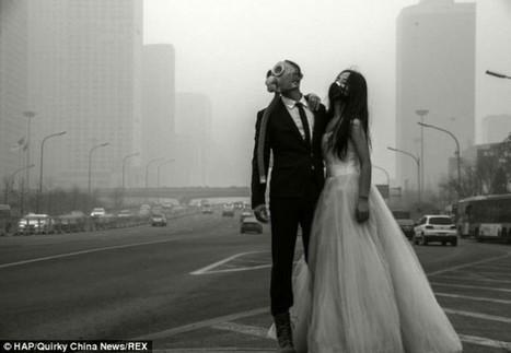 Les particules fines témoin d'un mariage à Pékin | Insolite DD | Scoop.it