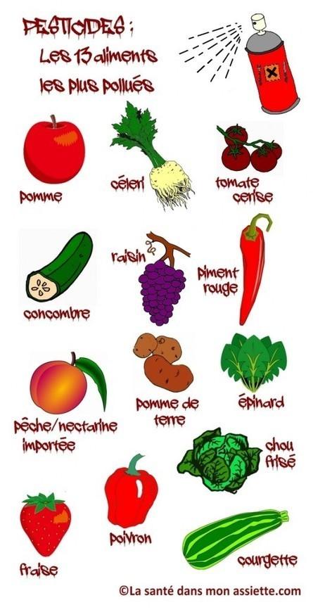 Les 13 aliments les plus pollués par les pesticides. - Blog Un Resto dans mon Salon | Pesticides et traitements phytosanitaires | Scoop.it