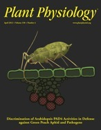 Plasma membrane calcium ATPases are important components of receptor-mediated signalling in plant immune responses and development | Effectors and Plant Immunity | Scoop.it