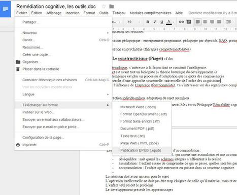 Outils numériques et handicap (mais pas que...): Google Document exporte en Epub ! | Ressources pédagogiques, former par le numérique | Scoop.it