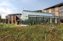 DETROIT: Une serre biologique change la vie d'un hôpital | News from the World | Scoop.it