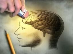 Principales características de la enfermedad de Alzheimer | enfermedadesytratamientos.com | Scoop.it