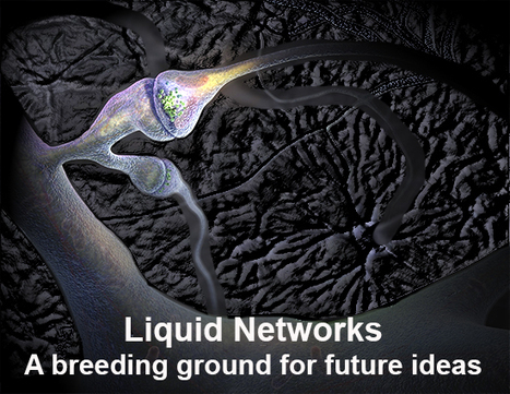 FuturistSpeaker.com – A Study of Future Trends and Predictions by Futurist Thomas Frey » Blog Archive » The Future Library – A Liquid Network for Ideas | leapmind | Scoop.it