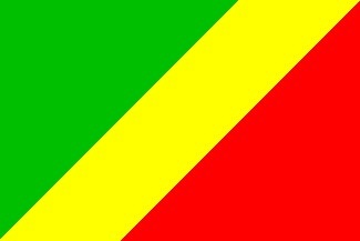 Congo opposition protests against the announced constitutional amendment   African News Agency   Scoop.it