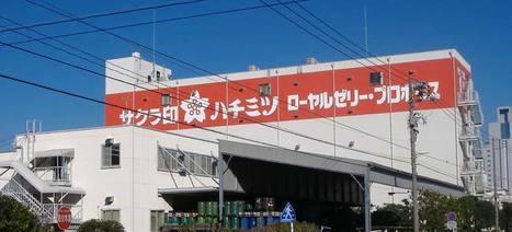 Après le séisme, le rebond de l'industrie au Japon - (J.P. Morgan AM) | Sicavonline | Japon : séisme, tsunami & conséquences | Scoop.it