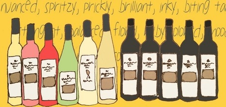 The 10 Terms Every Wine Drinker Should Learn — Vintopia | Learning is always creative | Scoop.it
