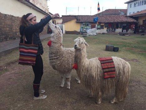 "Review Olivia Volunteer in Cusco, Peru medical program Abroaderview.org | ""#Volunteer Abroad Information: Volunteering, Airlines, Countries, Pictures, Cultures"" 