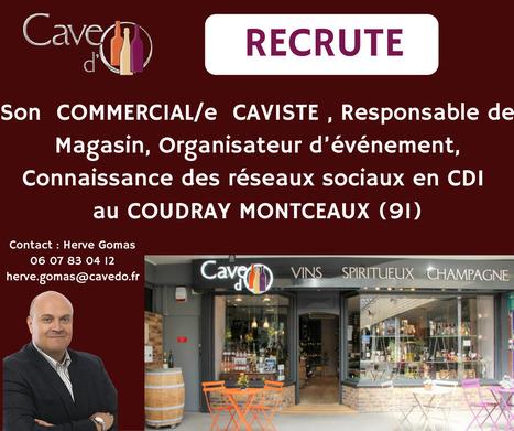 Cave d'O recherche pour son magasin du Coudray Montceaux Un/e COMMERCIAL/e CAVISTE, Responsable de Magasin en CDI. #emploi #vins #essonne   Vos Clés de la Cave   Scoop.it