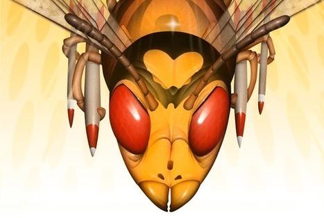 #33 | Bug Agentes Biológicos, por Fast Company | Economia Criativa | Scoop.it