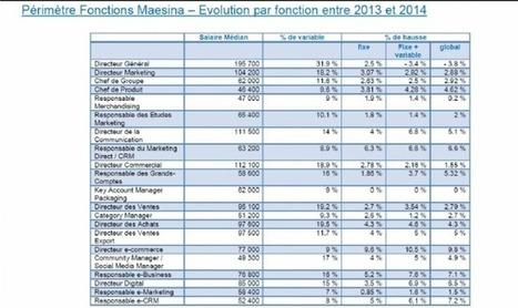 [Salaires] Un directeur e-commerce perçoit 77 K euros annuel en moyenne | Strategie, croissance, développement, innovation | Scoop.it