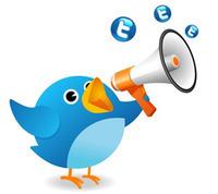 12 conseils pour faire connaitre son compte Twitter...   SI mon projet TIC   Scoop.it