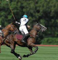 A Race Between Philip Kapneck, Princess Anne And A Polo Pony   FREE HUgZ - sharing of inspiration and miracles   Scoop.it