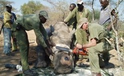 Tanzania: Will Govt Move People So Wildlife Can Access Water? | GarryRogers NatCon News | Scoop.it