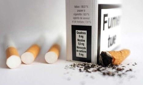 Le fumeur en bonne santé est «un mythe» | Gardiens de la Démocratie 2.0 | Scoop.it