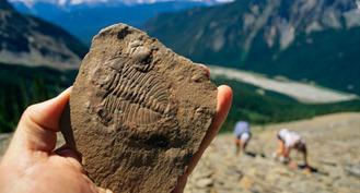 Evolution World Tour: Burgess Shale, British Columbia, Canada | ScienceStuff | Scoop.it