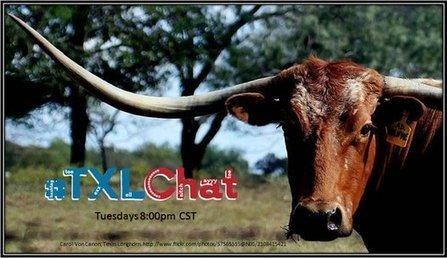 #txlchat | Information Powerhouses | Scoop.it