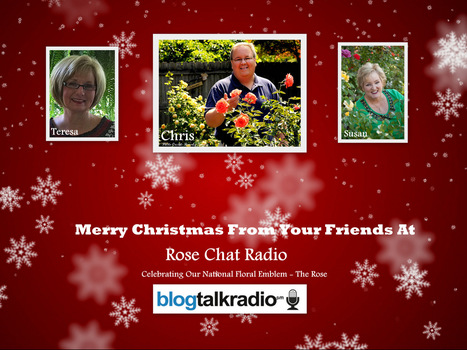 Rose Chat Radio News | Free Roses | Great Guests | Annie Haven | Haven Brand | Scoop.it