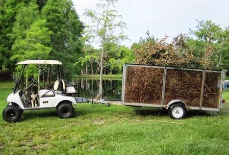 Formosa Covers Blog: Golf Carts Don't Have to be in Golf Courses All the Time | Covers | Scoop.it