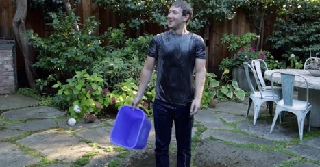 Mark Zuckerberg and Other Tech CEOs Pour Ice Water on Their Heads | Prozac Moments | Scoop.it