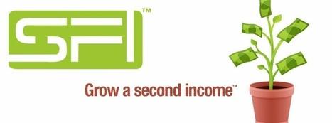 Real Internet Income | HomeBizAdvice | Scoop.it