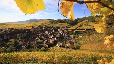 Candidature du vignoble alsacien au patrimoine de l'UNESCO, le dossier avance | Alsace Actu | Scoop.it