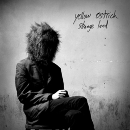 Yellow Ostrich: Strange Land :: Music :: Reviews :: Paste | Alternative Rock | Scoop.it