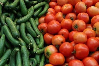 Violent Virus Destroying Israeli Tomatoes | Virology News | Scoop.it