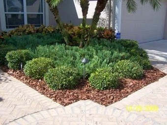 Take expert advice from professional landscaping Tampa | Landscaping | Scoop.it