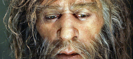 Last Neanderthals of Southern Iberia may never have met Homo sapiens : Past Horizons Archaeology | Paleoanthropology news | Scoop.it