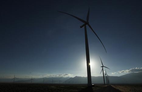 Bat deaths prompt change at wind farm - Las Vegas Review-Journal | Bat Biology and Ecology | Scoop.it
