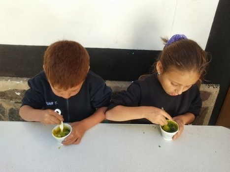 La Ciencia en Educación Infantil: ARTE Y EXPERIMENTACIÓN EN EL AULA INFANTIL | Educación Infantil | Scoop.it