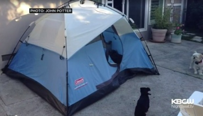 Backyard Tent Renting for $899/Month ~ What's Wrong with the Bay Area? | San Francisco In-Law Unit News | Scoop.it