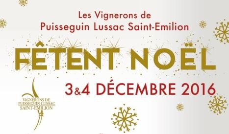 3 et 4 décembre : portes ouvertes à Puisseguin Lussac et Saint-Emilion   Oenotourisme et idées rafraichissantes   Scoop.it