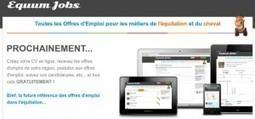 Toutes les offres d'emploi pour les métiers de l'équitation et du cheval | Equum.fr | Scoop.it