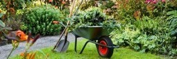 Vegetable Gardening » Organic Gardening Advice That Everyone Should Know | Gardening is more than Digging the Dirt | Scoop.it