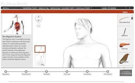 Build a Body, aprende anatomía construyendo el cuerpo humano | EVA | Scoop.it