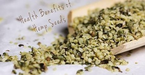 Why You Should Be Eating Hemp Seeds Every Day(includes delicious recipe)! | zestful living | Scoop.it