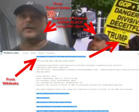 NEW Wikileaks Emails Confirm Project Veritas Videos as 100% AUTHENTIC | EUTimes.net | Global politics | Scoop.it