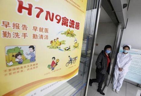 Cas de résistance au tamiflu sur des malades de la grippe H7N9 | Toxique, soyons vigilant ! | Scoop.it