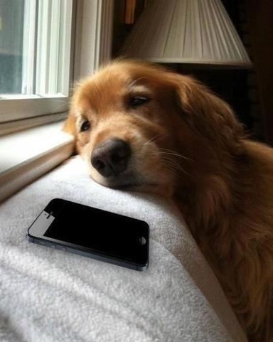 Twitter / TweetLikeAGirI: me when im waiting for someone ... | สินค้าไอที,สินค้าไอที,IT,Accessoriescomputer,ลำโพง ราคาถูก,อีสแปร์คอมพิวเตอร์ | Scoop.it