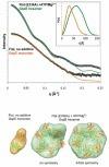 Archaeal flagellar ATPase motor shows ATP-dependen... [Biochem J. 2011] - PubMed - NCBI   Publications-Albers lab   Scoop.it