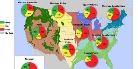 La moitié des rivières américaines sont en mauvaise santé | Toxique, soyons vigilant ! | Scoop.it
