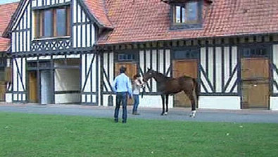 Le haras des Monceaux grand gagnant des ventes - Yearlings - France 3 Régions | Cheval et sport | Scoop.it