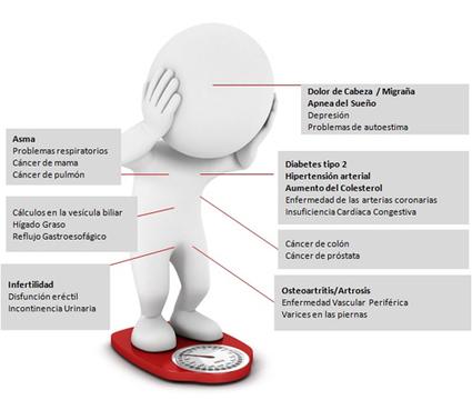 Mala alimentación causa obesidad y enfermedades cardíacas - El Periodiquito   El mundo lucha contra la obesidad   Scoop.it