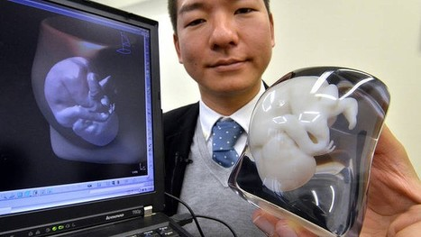 Japanese firm offers expectant parents 3D-printed fetus from MRI scan | Biatec | Scoop.it