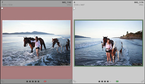 Seven Pieces of Advice for New Lightroom Users | LR4-CS6-win8 | Scoop.it