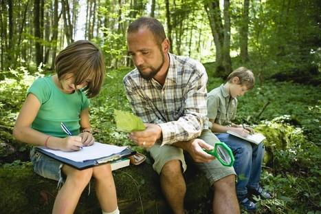Curriculum Resources « Junior Landcare | Curriculum resource reviews | Scoop.it