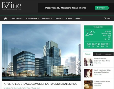 WordPress Themes Supporting Third Party Ads To Monetize Your Website   Web Development Services   Scoop.it